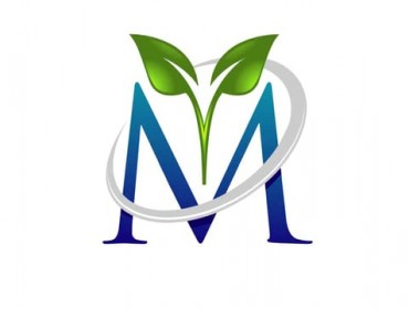 Logo Animation (CHR-2)